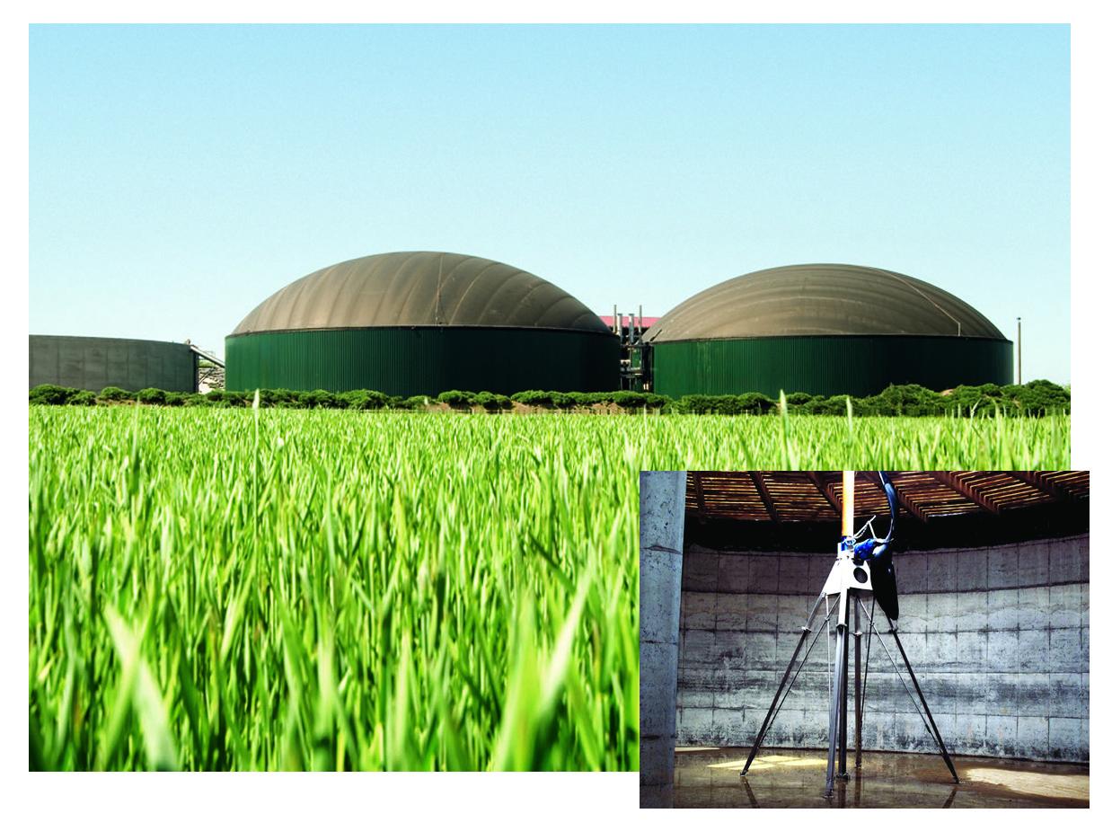 Biofuel and Biogas_art_original