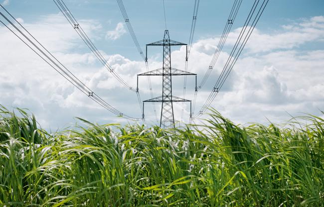 biomass energy plant - photo #33