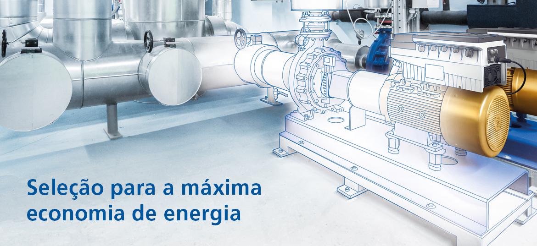 Seleção para a máxima economia de energia
