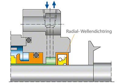 Wellendichtung: Radial-Wellendichtring