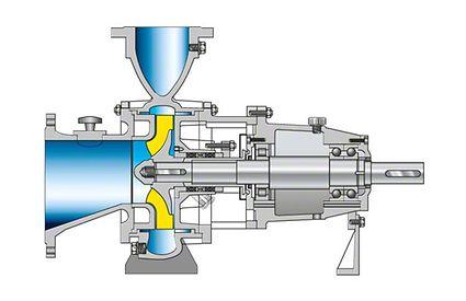Dickstoffpumpe: Prozessbauweise, offenes Laufrad, Schleißwand auf der Saugseite