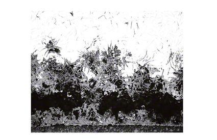 Corrosion: Spongiosis (micrograph)