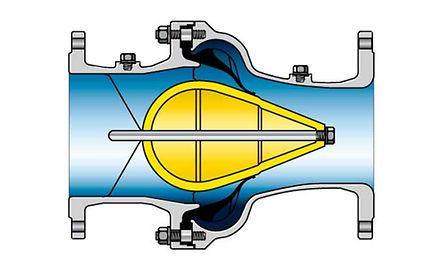 Valve: Diaphragm check valve