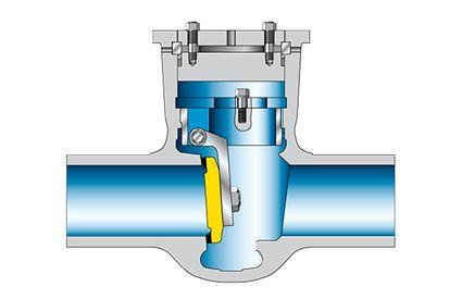 Valve: Gravity-dependent swing check valve